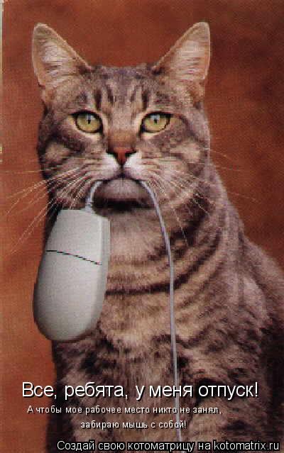 Котоматрица: Все, ребята, у меня отпуск! А чтобы мое рабочее место никто не занял,  забираю мышь с собой!