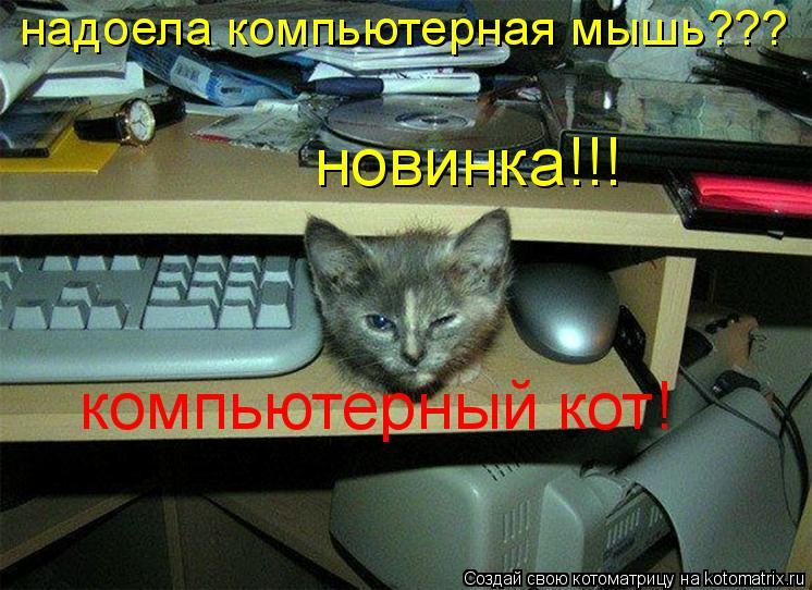 Котоматрица: надоела компьютерная мышь??? новинка!!! компьютерный кот!