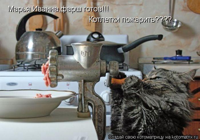 Котоматрица: Марья Иванна,фарш готов!!! Котлетки пожарить????