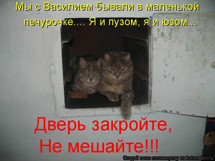 Котоматрица: Мы с Василием бывали в маленькой печурочке.... Я и пузом, я и юзом... Дверь закройте, Не мешайте!!!