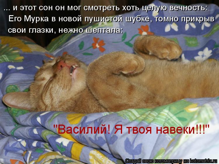 """Котоматрица: ... и этот сон он мог смотреть хоть целую вечность: Его Мурка в новой пушистой шубке, томно прикрыв свои глазки, нежно шептала: """"Василий! Я твоя"""