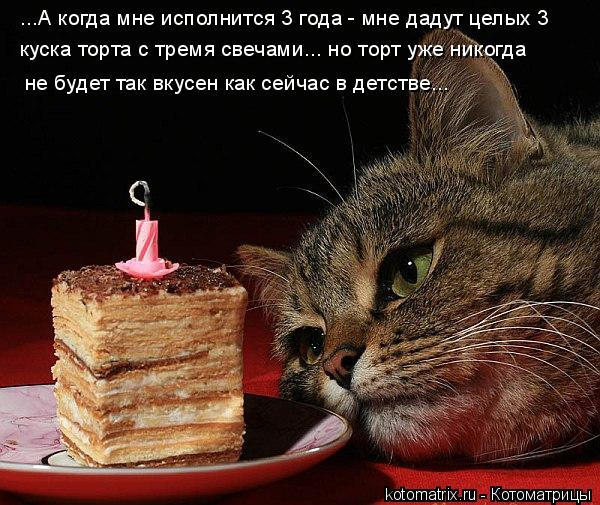 Котоматрица: ...А когда мне исполнится 3 года - мне дадут целых 3  не будет так вкусен как сейчас в детстве... куска торта с тремя свечами... но торт уже никогд