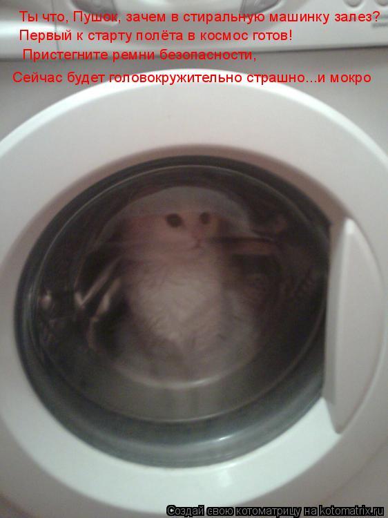 Котоматрица: Ты что, Пушок, зачем в стиральную машинку залез? Ты что, Пушок, зачем в стиральную машинку залез? Первый к старту полёта в космос готов!  Прист