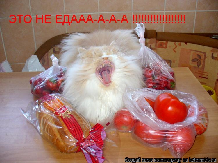 Котоматрица: ЭТО НЕ ЕДААА-А-А-А !!!!!!!!!!!!!!!!!!