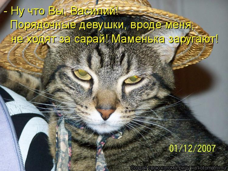Котоматрица: - Ну что Вы, Василий!    Порядочные девушки, вроде меня,   не ходят за сарай! Маменька заругают!