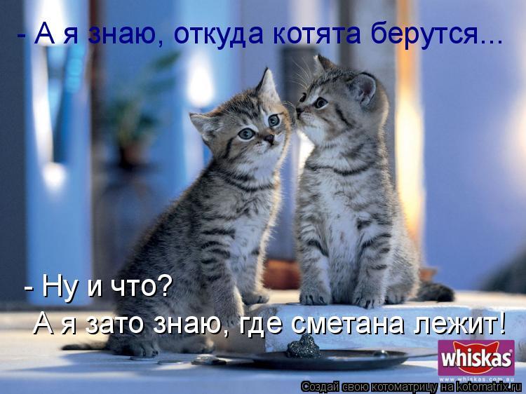 http://kotomatrix.ru/images/lolz/2009/07/15/322096.jpg