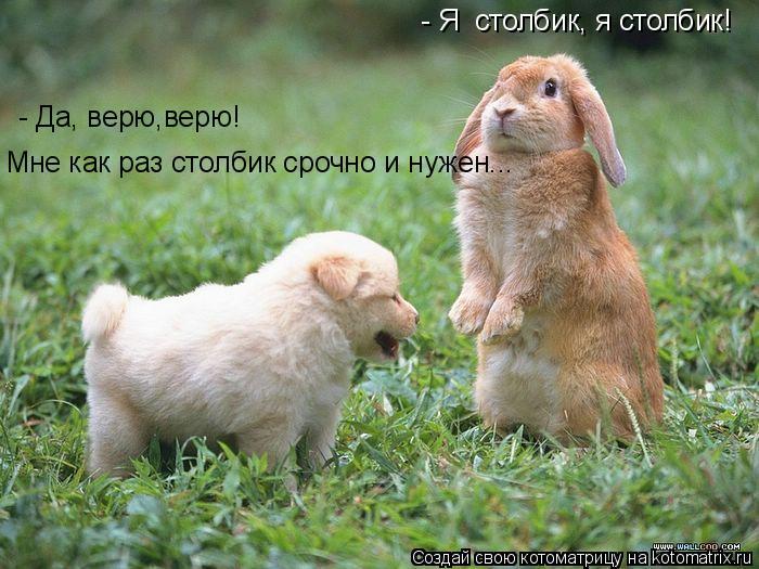 http://kotomatrix.ru/images/lolz/2009/07/15/322186.jpg