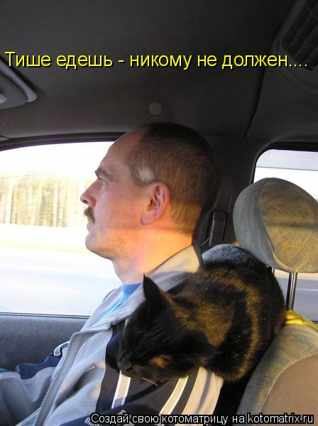 Котоматрица: Тише едешь- Тише едешь - никому не должен....