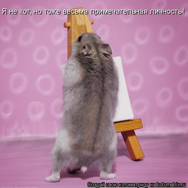 Котоматрица: Я не кот, но тоже весьма примечательная личность!