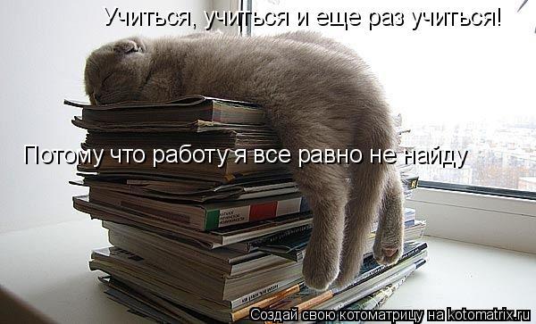 Котоматрица: Учиться, учиться и еще раз учиться! Потому что работу я все равно не найду