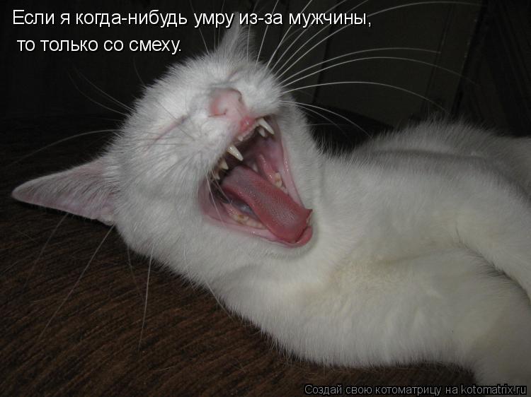 Котоматрица: Если я когда-нибудь умру из-за мужчины, то только со смеху.