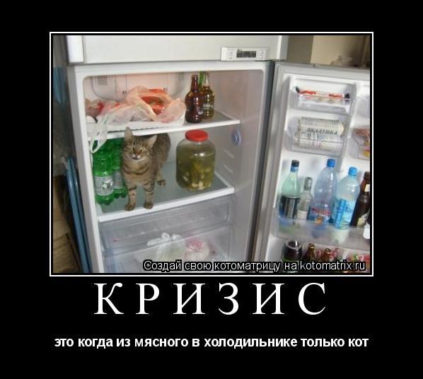 Котоматрица: кризис это когда из мясного в холодильнике только кот