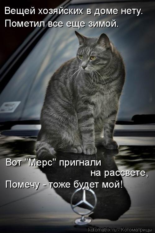 """Котоматрица: Вещей хозяйских в доме нету. Пометил все еще зимой. Вот """"Мерс"""" пригнали  на рассвете, Помечу - тоже будет мой!"""