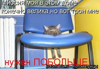Котоматрица: Миссия моя в этом доме  конечно велика,но вот трон мне нужен ПОБОЛЬШЕ!