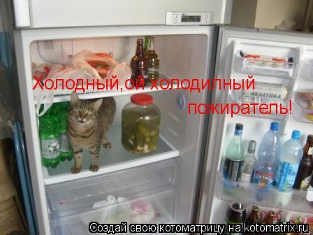 Котоматрица: Холодный,ой холодилный пожиратель! пожиратель!