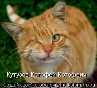 Котоматрица: Кутузов Котофей Котофеич