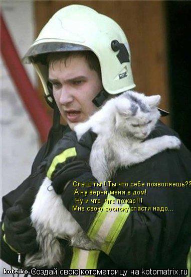 Котоматрица: Слыш ты!! Ты что себе позволяешь??? А ну верни меня в дом! Ну и что, что пожар!!! Мне свою сосиску спасти надо...