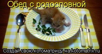 Котоматрица: Обед с родословной