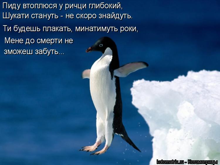 Котоматрица: Пиду втоплюся у ричци глибокий,  Шукати стануть - не скоро знайдуть.  Ти будешь плакать, минатимуть роки,  Мене до смерти не  зможеш забуть...