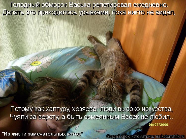 Котоматрица: Голодный обморок Васька репетировал ежедневно. Делать это приходилось урывками, пока никто не видел, Потому как халтуру, хозяева, люди высо