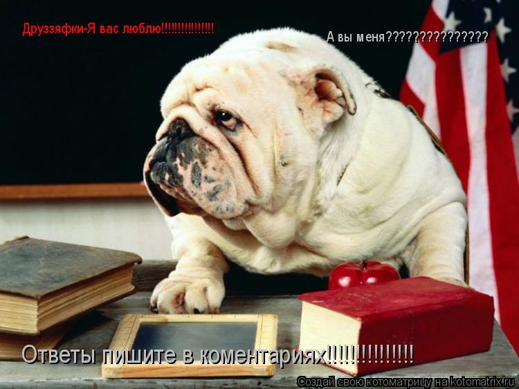 Котоматрица: Друззяфки-Я вас люблю!!!!!!!!!!!!!!!! А вы меня??????????????? Ответы пишите в коментариях!!!!!!!!!!!!!!!