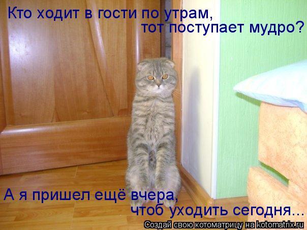 Котоматрица: Кто ходит в гости по утрам, тот поступает мудро? А я пришел ещё вчера, чтоб уходить сегодня...