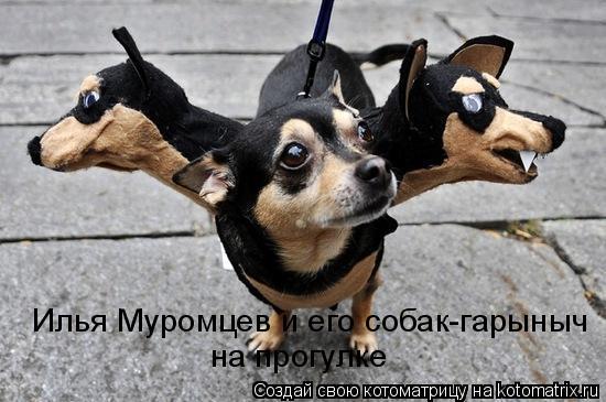 Котоматрица: Илья Муромцев и его собак-гарыныч на прогулке