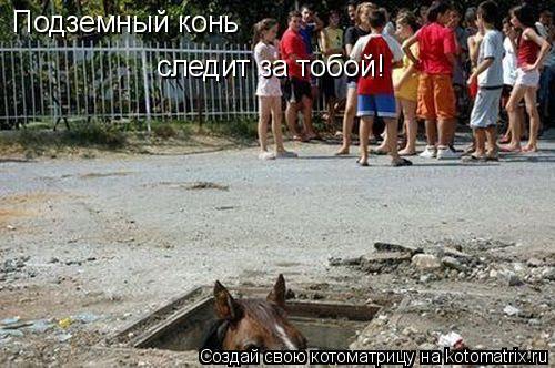 Котоматрица: Подземный конь следит за тобой!