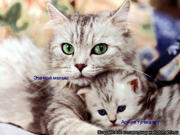 Котоматрица: Это мой малыш... Агуния тугева агу