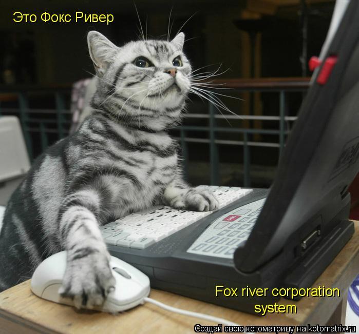 Котоматрица: Это Фокс Ривер Fox river corporation system