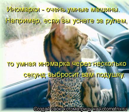 Котоматрица: Иномарки - очень умные машины.  Например, если вы уснете за рулем, то умная иномарка через несколько секунд выбросит вам подушку.