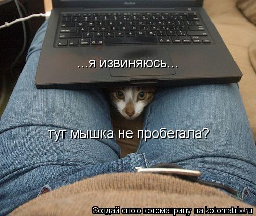 Котоматрица: ...я извиняюсь... тут мышка не пробегала?