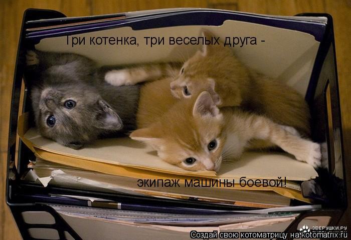 Котоматрица: Три котенка, три веселых друга - экипаж машины боевой!