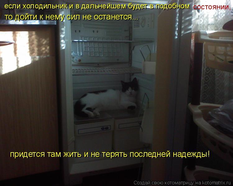 Котоматрица: то дойти к нему сил не останется... придется там жить и не терять последней надежды! если холодильник и в дальнейшем будет в подобном  состоя