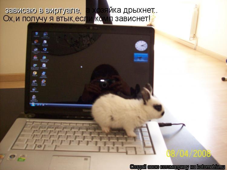 Котоматрица: зависаю в виртуале, а хозяйка дрыхнет.. Ох,и получу я втык,если комп зависнет!