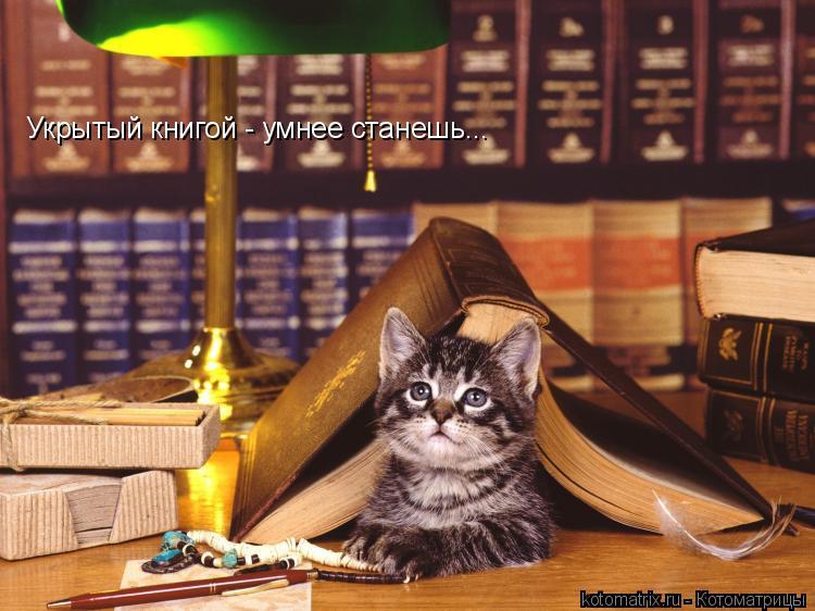 Котоматрица: Укрытый книгой - умнее станешь...