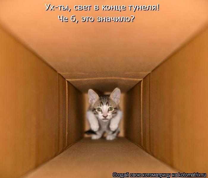 Котоматрица: Ух-ты, свет в конце тунеля! Че б, это значило?