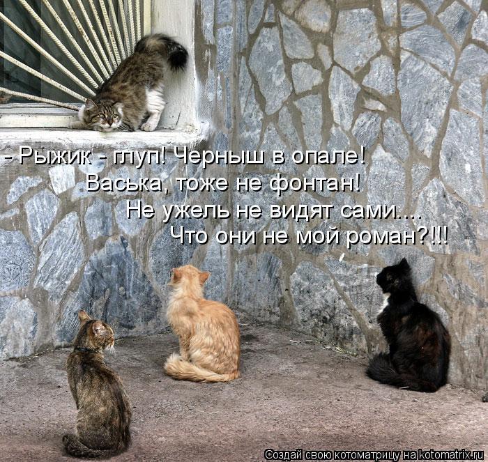 Котоматрица: - Рыжик - глуп! Черныш в опале! Васька, тоже не фонтан! Не ужель не видят сами.... Что они не мой роман?!!!