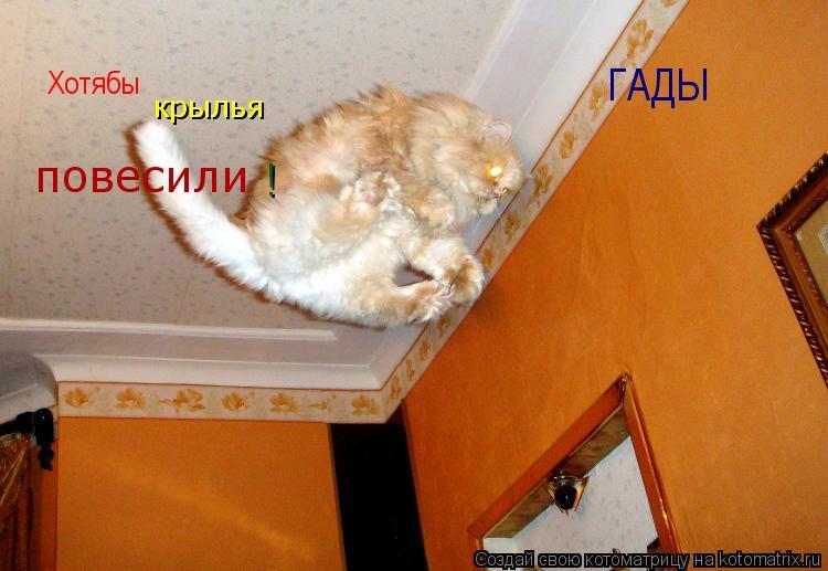 Котоматрица: Хотябы крылья повесили ! ГАДЫ
