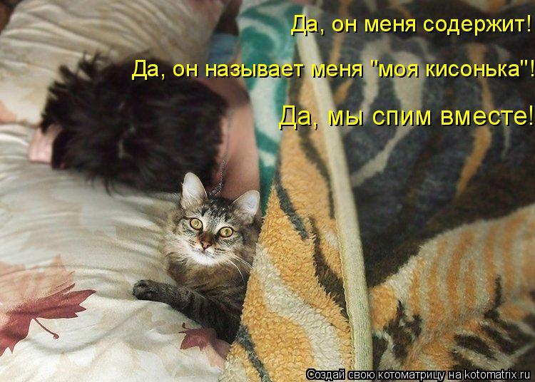 """Котоматрица: Да, он меня содержит! Да, он называет меня """"моя кисонька""""! Да, мы спим вместе!"""