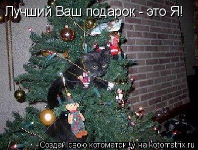Котоматрица: Лучший Ваш подарок - это Я!
