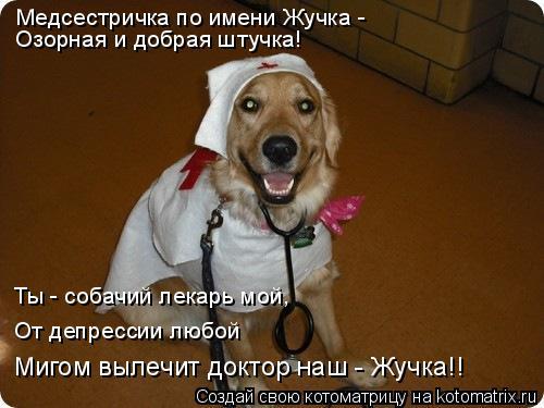 Котоматрица: Медсестричка по имени Жучка - Озорная и добрая штучка! Ты - собачий лекарь мой, От депрессии любой Мигом вылечит доктор наш - Жучка!!