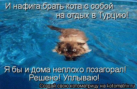 Котоматрица: И нафига брать кота с собой  на отдых в Турцию!  Я бы и дома неплохо позагорал! Решено! Уплываю!