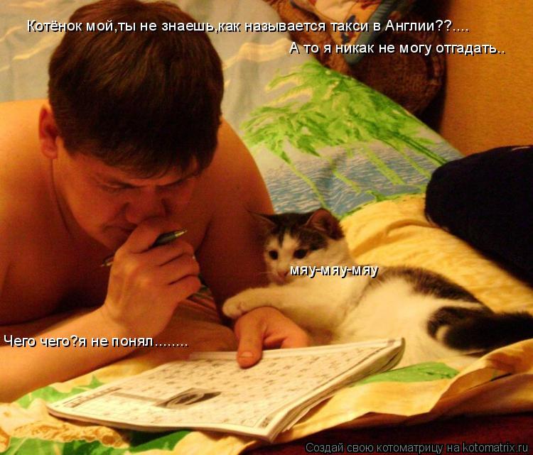 Котоматрица: Котёнок мой,ты не знаешь,как называется такси в Англии??.... А то я никак не могу отгадать.. мяу-мяу-мяу Чего чего?я не понял........