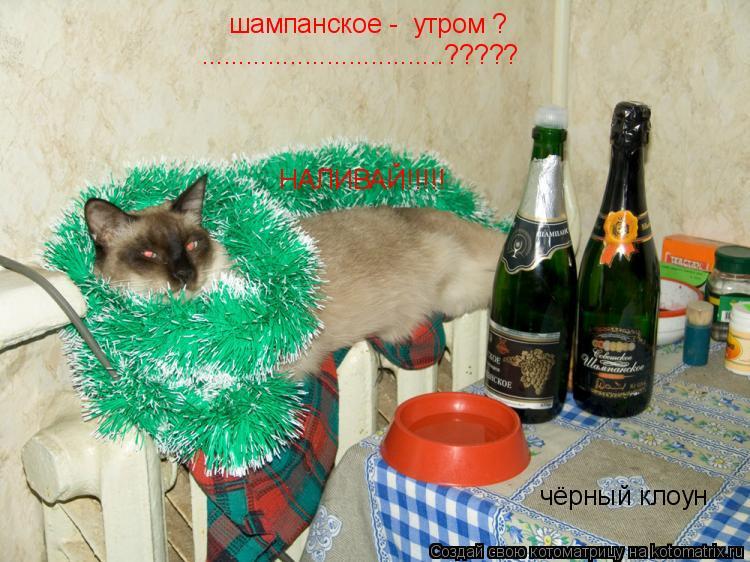 Котоматрица: шампанское -  утром ?  НАЛИВАЙ!!!!! .................................????? чёрный клоун