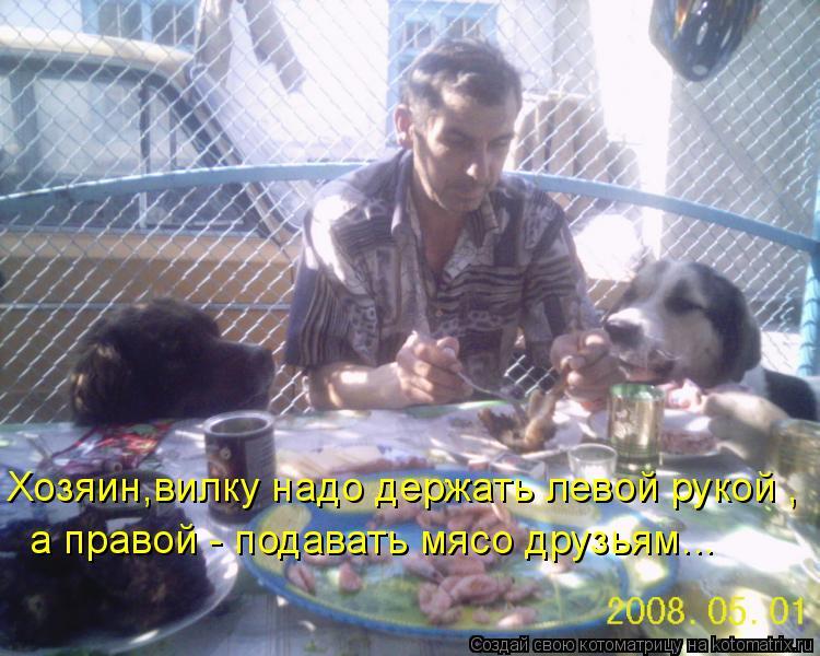 Котоматрица: Хозяин,вилку надо держать левой рукой , а правой - подавать мясо друзьям...