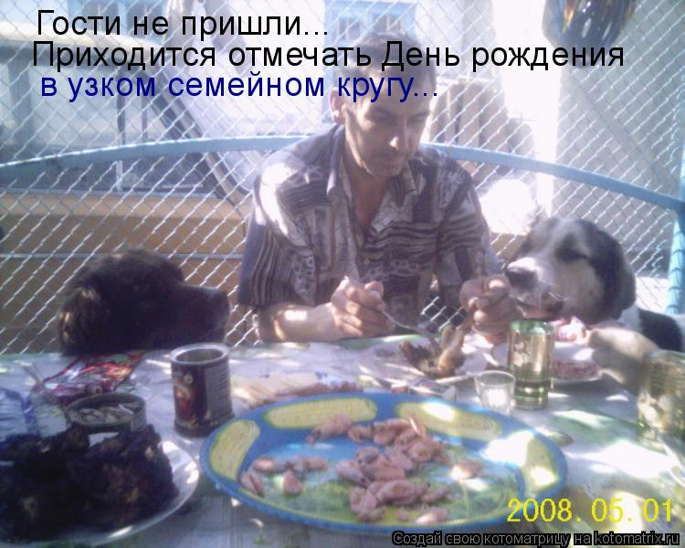 Котоматрица: Гости не пришли... Приходится отмечать День рождения  в узком семейном кругу...