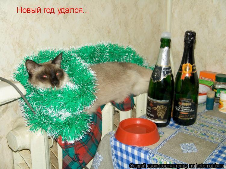 Котоматрица: Новый год удался...