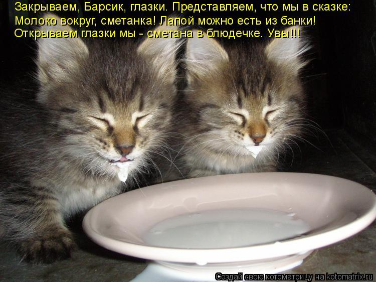 Котоматрица: Закрываем, Барсик, глазки. Представляем, что мы в сказке: Молоко вокруг, сметанка! Лапой можно есть из банки! Открываем глазки мы - сметана в б