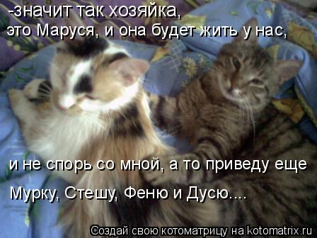 Котоматрица: -значит так хозяйка, это Маруся, и она будет жить у нас, и не спорь со мной, а то приведу еще Мурку, Стешу, Феню и Дусю....